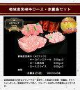 宮崎県都城産 はちみつ らっきょう 100g 1個 300円