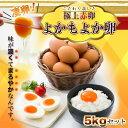【ふるさと納税】極上赤卵「よかもよか卵」5kgセット - 河...