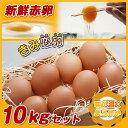 【ふるさと納税】新鮮赤卵「きみ恋卵」10kgセット - 健康...