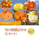 【ふるさと納税】 南国からの贈り物「旬の柑橘詰合せ」(Lセット)