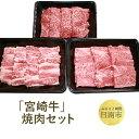 【ふるさと納税】 「宮崎牛」焼肉セット...