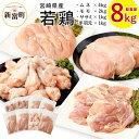 【ふるさと納税】宮崎県産 若鶏セット8kg 鶏肉 鳥肉 もも...