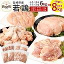 【ふるさと納税】宮崎県産 若鶏セット8kg 今だけ増量! 鶏肉 鳥肉 もも肉 2kg むね肉 4kg...