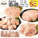 【ふるさと納税】宮崎県産 若鶏セット 合計5kg 5000g 鶏肉 鳥肉 お肉 もも肉 1kg むね...