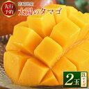 【ふるさと納税】<先行予約>宮崎県産 「太陽のタマゴ」2Lサイズ 2玉 完熟マンゴー