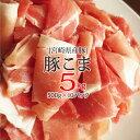 【ふるさと納税】 宮崎県産 豚 こま肉 5kg (500g×10パック)豚肉 こま切れ 普段使い 冷...