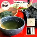【ふるさと納税】雅 -MIYABI- お茶セット 宮崎県 新富町 煎茶 深蒸し茶