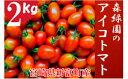 【ふるさと納税】予約受付 完熟ミニトマト アイコトマト 2k...