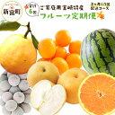 【ふるさと納税】ご家庭用 宮崎特産 フルーツ定期便 2ヵ月に...