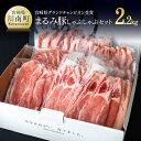 【ふるさと納税】 豚肉 『まるみ豚しゃぶしゃぶセット2020』 宮崎県グランドチャンピオン獲得 肉