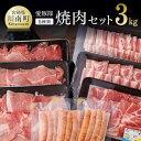 【ふるさと納税】愛豚隊焼肉セット 合計3.0kg以上