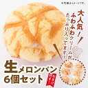 【ふるさと納税】「押川春月堂」人気の生メロンパン6個セット+...
