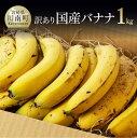 【ふるさと納税】【訳あり】国産バナナ1kg ご自宅用や皮ごとスムージーにもオスス