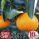 【ふるさと納税】《2019年12月末日〜2020年2月末の間に発送予定》【数量限定】柑橘のスイートス...