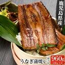 【ふるさと納税】鹿児島県産うなぎ蒲焼 Cセット 計960g ...