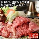 【ふるさと納税】日本一の牛肉!鹿児島県産黒毛和牛・鹿児島黒豚...