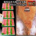 【ふるさと納税】和牛日本一!鹿児島産黒毛和牛・鹿児島黒豚・骨付きハム計約10kg超え♪そお星人2号【ナンチク】