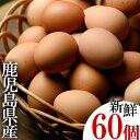 【ふるさと納税】薩摩ヤブサメ酵素卵(60個)本来のたまごの味にこだわったタマゴ!【ヤブサメファーム】