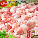 【ふるさと納税】限定!安心安全九州産の豚コマ切れがなんと7kg!(500g×14パック)野菜炒めや豚...
