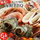 【ふるさと納税】鹿児島県志布志湾産!朝獲れの新鮮な魚介類を海...