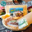 【ふるさと納税】鶏飯(けいはん)4食セット