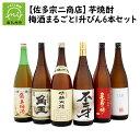 【ふるさと納税】【佐多宗二商店】芋焼酎・梅酒まるごと1升びん...