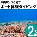 【ふるさと納税】沖縄サンゴの村でボート体験ダイビング(2名様)