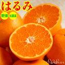 【訳あり】低農薬 愛媛 はるみ みかん 約5kg 小玉SSサイズ 産地直送 ore NN 2t