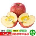 減農薬 サンふじ りんご 訳あり 約4. 5kg 12〜25...
