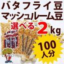 ポップコーン豆バタフライタイプ 2kg (500g×4袋)(約100人分)