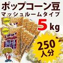 新発売 ポップコーン豆マッシュルームタイプ 5kg (500g×10袋)( 約250人分 )