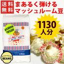 【送料無料】ポップコーン豆マッシュルームタイプ 22.68kg ( 約1130人分 ) 【KING】[
