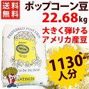 送料無料 業務用ポップコーン豆バタフライタイプ 22.68kg ( 約1130人分 ) アメリカ産