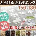 【送料無料】ラグ 洗える 長方形 【あす楽対応】『ふわもこラグ 〔モリス〕 150x180cm』 カーペット マット 北欧