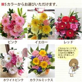 花のカラーを選べます