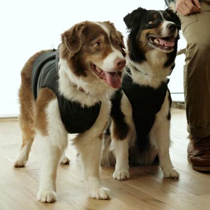 【犬 服 洋服】 ウィンドブレーカー【大型犬用】 【犬 服】大型犬用、雨にも風にも寒さにも