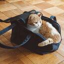 スクエア トート ハンプ ソリッド Mサイズ 猫用