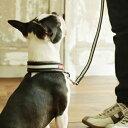【犬 首輪】リフレクティブ ハーフチョーク 30 小型犬 中型犬犬の首輪 カラー ナイロン製クッション首輪 ハーフチョーク