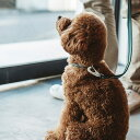 【犬 リード】フレッシュ ストライプ リード S サイズ 小型犬【犬 リード】【ファッションリード】【散歩】【テープ 首輪】【ハーネス】【カフェリード】【売れ筋】