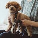 【犬 リード】リフレクティブリード S