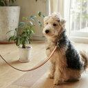 犬 首輪 革 小型犬用 オリジナルヌメカラー M