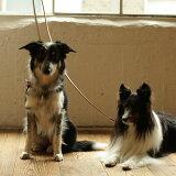【犬 リード】中・大型犬用リード 革 ヌメリングリード L リ−ド/リ-ド/皮