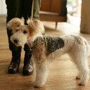【犬 リード】革 サニーストライプリード S 小型犬用 皮 リ−ド