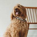 【犬 首輪】 リフレクティブ ハーフチョーク 40 中型犬犬の首輪 カラー ナイロン製クッション首輪 ハーフチョーク