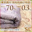 東京西川 西川 洗える 羽毛肌掛け布団(ダウンケット) ホワイトダウン70% MD6020B シングルサイズ【05P23Apr16】