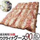 東京西川 羽毛布団 ウクライナ グース ダウン90%羽毛布団k8094(シングルサイズ) レッド・ブルー 側地綿100%