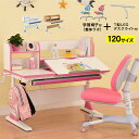学習机 勉強机 NEWヒーロー120(学習椅子整体ラボ+T型デスクライト付き)-GKI 幅120cm シンプル 角度 調整 高さ調整 姿勢 背筋 上棚 120