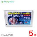 テイカパップIM 6枚入×5個【第2類医薬品】 富山 テイカ製薬ネコポス発送です