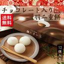 羽二重餅 チョコレート入り 【白いまい玉 12個入り】 和菓...