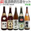 限定品【日本酒 飲み比べセット】晩酌5酒セット 一升5